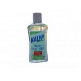 Kalyp Hand Sanitizer Aloe Vera 100 ml